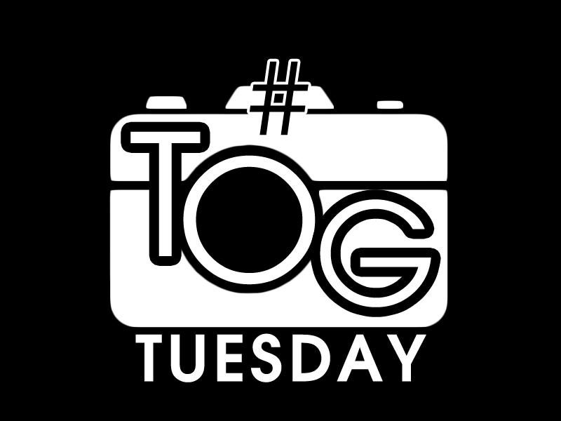 TogTuesday NEW #Tog Tuesday!