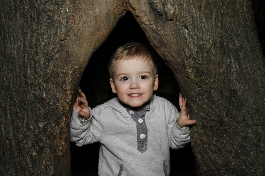 Photographing Children - Max