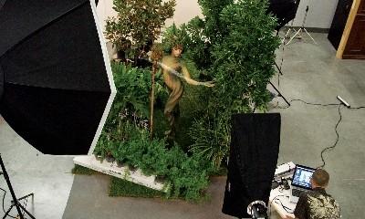 green-michael-20100124-01-se