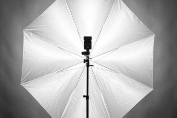 Large and Small Photography Umbrellas