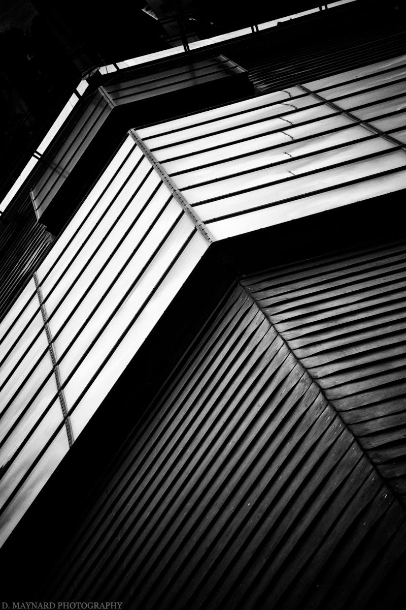 maynard-d-toppro-gallery-2012-20