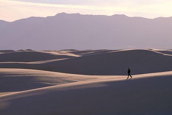 Cary Wolinsky and Bob Caputo Desert Walking